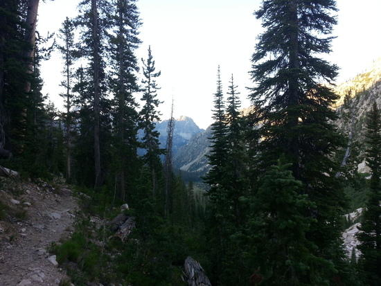 Trail from Spangle