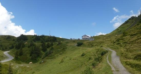 trail along the road up to grosse Scheidegg