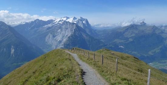 Planplatten. View back to grosse Scheidegg