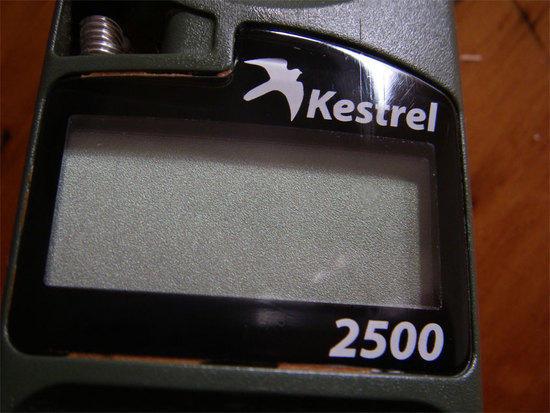 Kestrel after