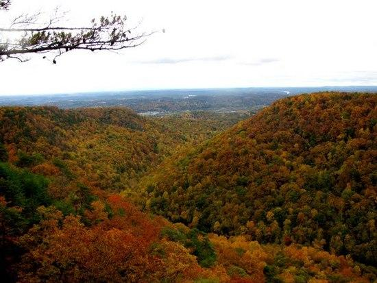 Buzzard Point Overlook, Laurel-Snow, Dayton, TN