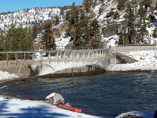 caples dam ice