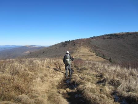 Hiking to Jane Bald