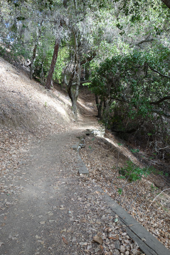 Half Mile Trail from the Parking Lot to the Vistor's Center