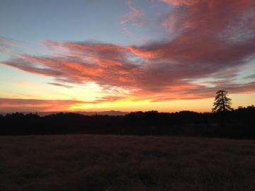 Coe walk in sunset