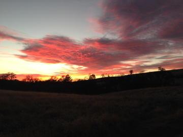 Coe walk in sunset 2