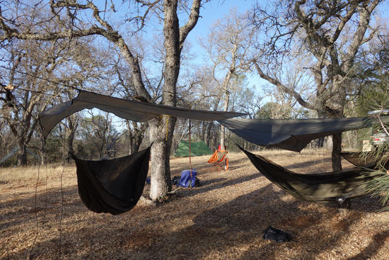 Hammock City 2