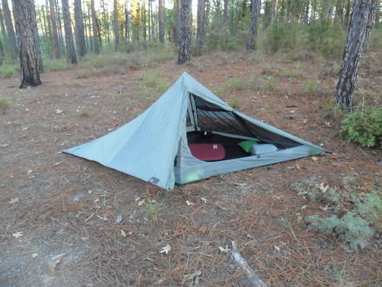 Solo pitched in the Kisatchie Wilderness