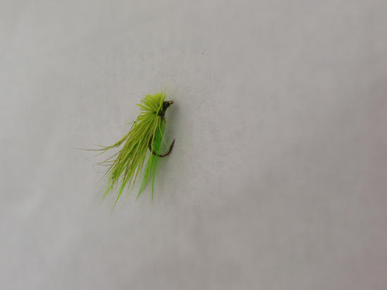 Green Elk Hair Caddis