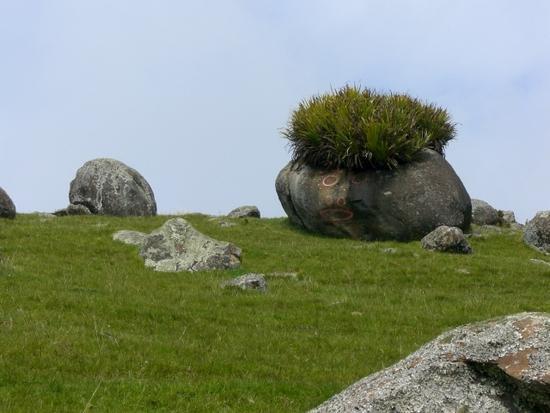 bob the boulder