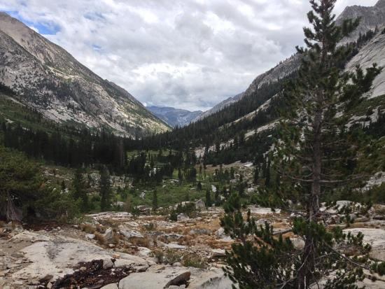 Trail 6446