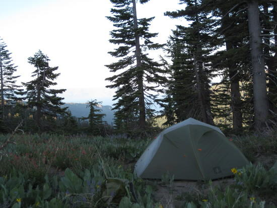Quarter dome t2 & For a light 2P Freestanding Tent: REI T2 T2 Plus CS UL3 or other ...