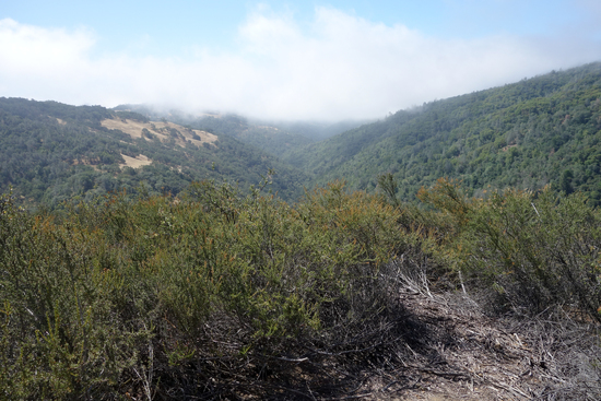 View of the Dusty Trail 2