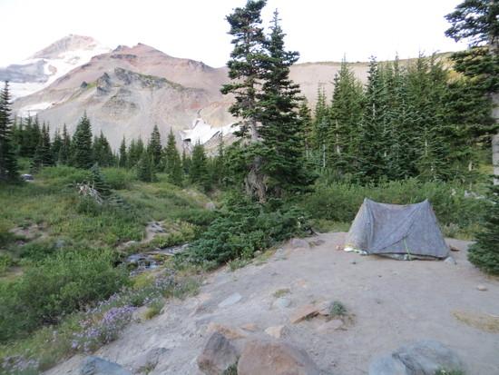 Elk Cove camp